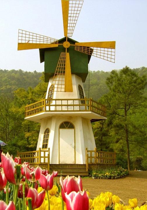 绵阳防腐木风车